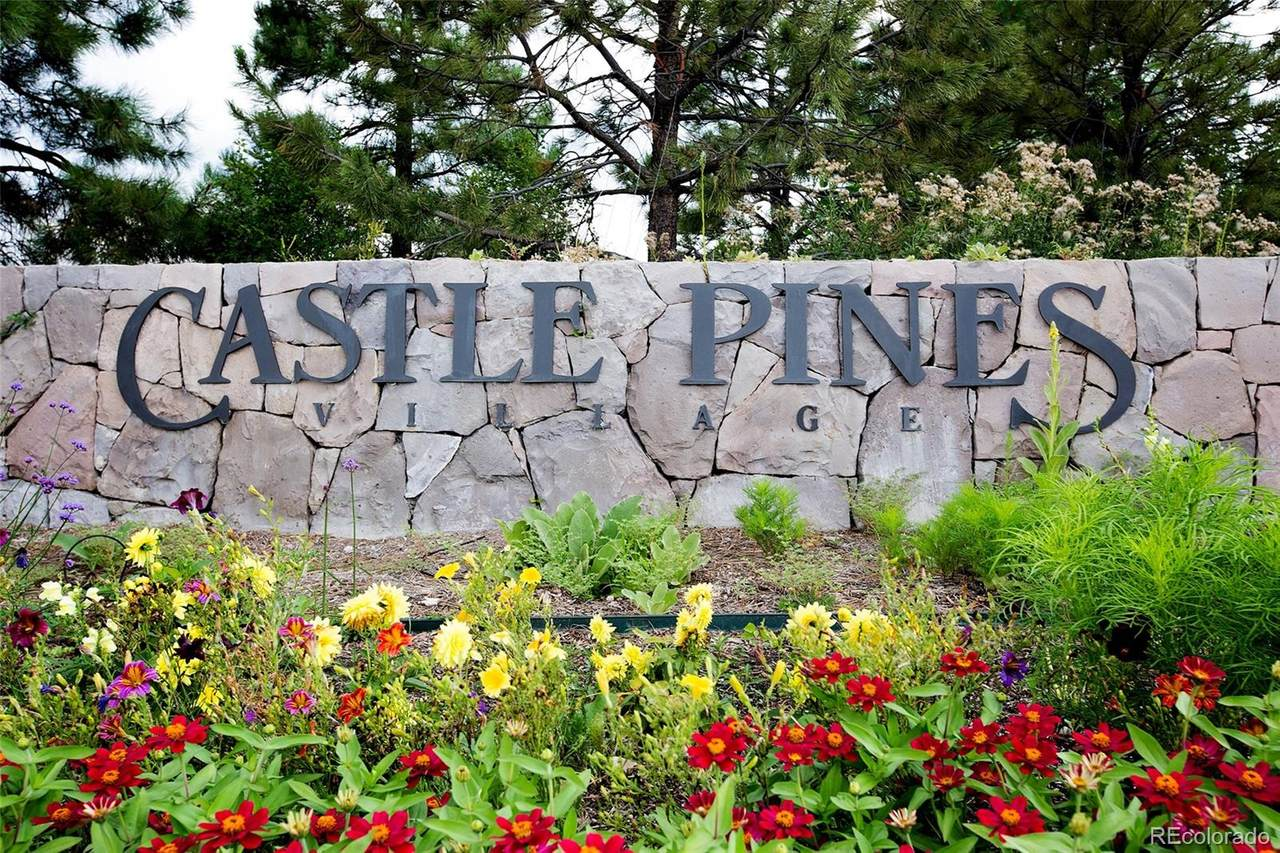 953 Castle Pines North Drive - Photo 1