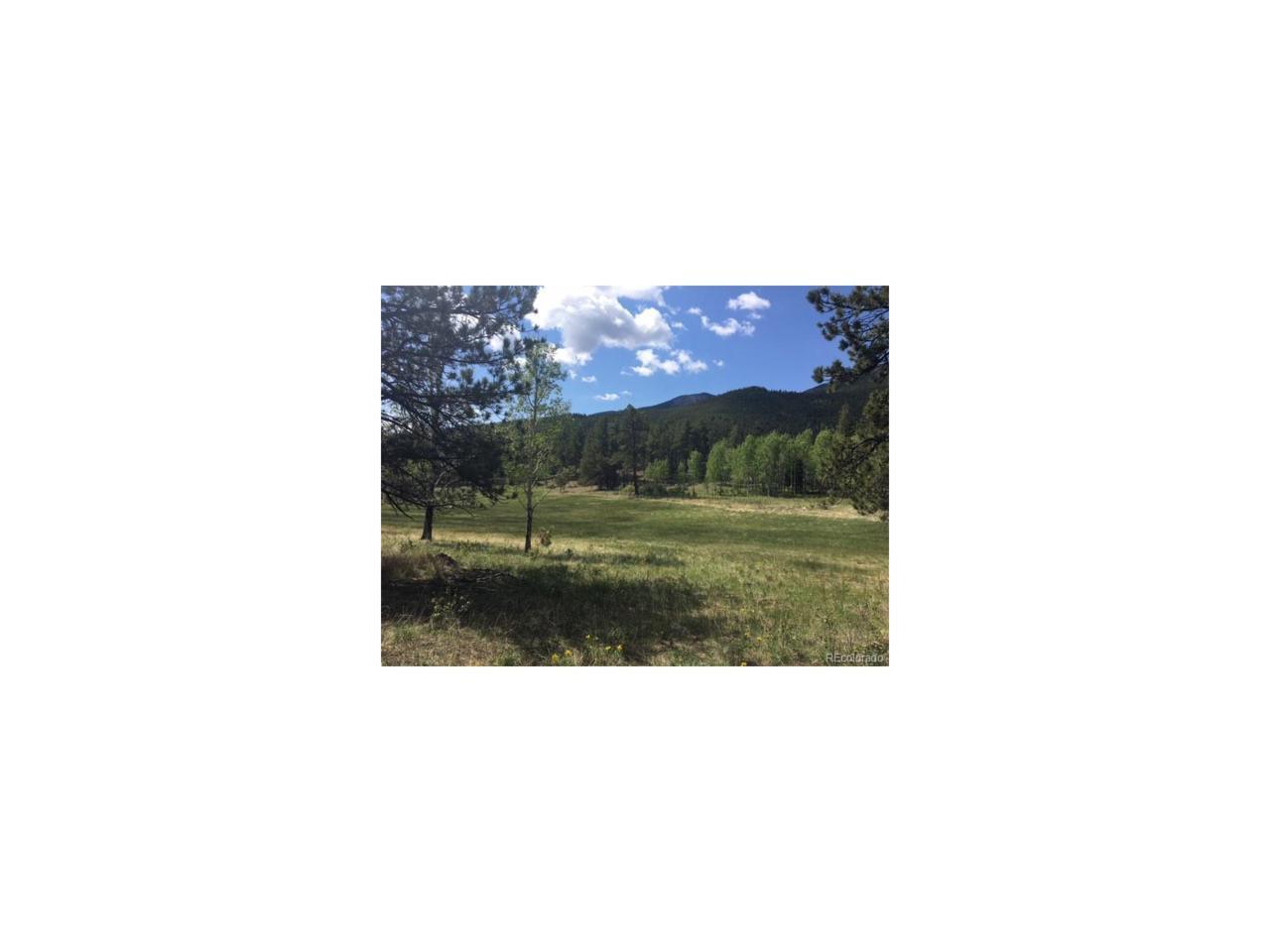 Fs 117A Forest, Shawnee, CO 80475 (MLS #2608153) :: 8z Real Estate