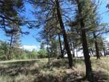 2494 Mountain Estates Road - Photo 13