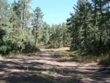 7688 Mohawk Court - Photo 5