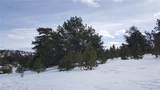 861 Hiawatha Circle - Photo 6