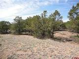 20 Cottonwood Loop - Photo 4