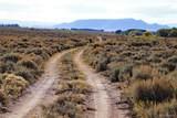 70+ Acres Reichwein Ranches - Photo 11