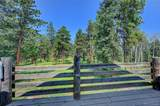 669 Mount Evans Boulevard - Photo 27