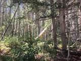 54 Deer Park Rd - Photo 1