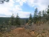 371 Cat Creek Overlook - Photo 2