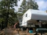 371 Cat Creek Overlook - Photo 9