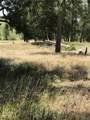 10560 Shadow Pines Road - Photo 3