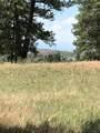 10560 Shadow Pines Road - Photo 9