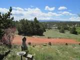 4079 Comanche Drive - Photo 3