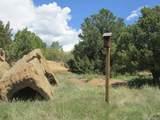 4079 Comanche Drive - Photo 8