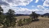 Coyote Drive - Photo 10