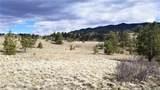 Coyote Drive - Photo 3