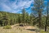 14433 Lot 3 Elk Creek Road - Photo 8