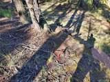 108 Antelope Circle - Photo 2
