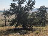 840 Arapaho Trail - Photo 3