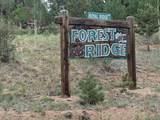 1186 Royal Ridge Drive - Photo 16