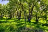 Corner Of County Line Rd & Kiowa Creek - Photo 12