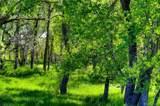 Corner Of County Line Rd & Kiowa Creek - Photo 16