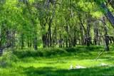 Corner Of County Line Rd & Kiowa Creek - Photo 2