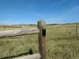 Lot 1 Fiddleback Ranch Circle - Photo 9