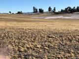 262 Grand Teton Drive - Photo 4