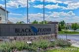 494 Black Feather Loop - Photo 19