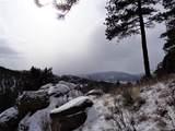 26129 Wild Flower Trail - Photo 35