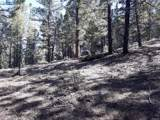 20153 Spring Creek Trail - Photo 16