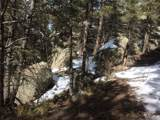 20153 Spring Creek Trail - Photo 6