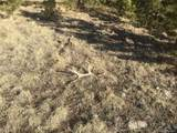0 Wet Canyon Rd - Photo 14