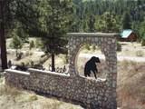 Bear Paw Court - Photo 2