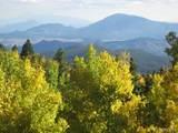 11183 Conifer Mountain Road - Photo 40