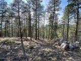 135 Linda Trail - Photo 1