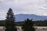5042 El Camino Drive - Photo 8