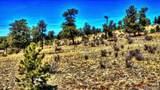 529 Goldenburg Canyon Road - Photo 16