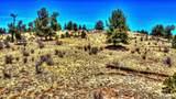 529 Goldenburg Canyon Road - Photo 17