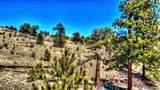 529 Goldenburg Canyon Road - Photo 18