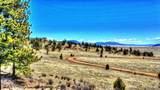 529 Goldenburg Canyon Road - Photo 19