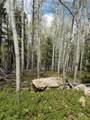 000 Hidden Wilderness Road - Photo 2