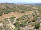 Currant Creek Road - Photo 2
