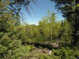 Lot 28 Copper Mountain Roads - Photo 14