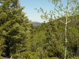 Lot 28 Copper Mountain Roads - Photo 2