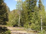 Lot 28 Copper Mountain Roads - Photo 4