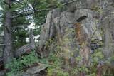 13927 Dancing Bear Trail - Photo 10