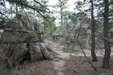 13927 Dancing Bear Trail - Photo 11