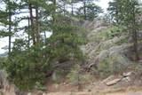 13927 Dancing Bear Trail - Photo 14