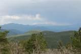 13927 Dancing Bear Trail - Photo 3