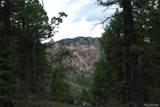 13927 Dancing Bear Trail - Photo 4