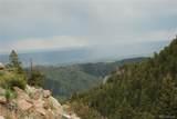 13927 Dancing Bear Trail - Photo 5